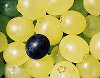Pattern/Grapes