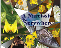 A narcissist is everywhere