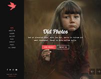 FreeBird - Photography Portfolio HTML Website Template