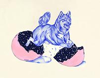 Shiba Dog by Pomme Chan