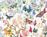 Print - Butterflies And Flowers