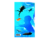 Explore the depths of your mind. IDB