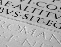 Kolumna Trajana - Mech/Trajan's Column - moss
