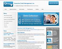 Executive Credit Management Web Site