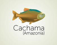 Peces de agua dulce de Colombia