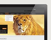 Stattimes Web Design