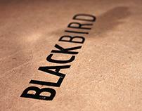 Visual Identity | Blackbird by The Beatles