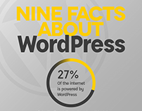 WordPress Infographic