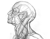 Sketchbook - Figure