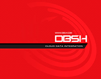 DBS-h Logo and Style