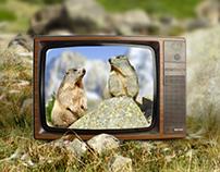 """TV spot """"Les 2 Marmottes"""""""