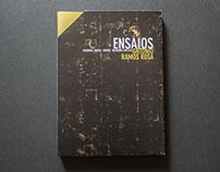 António Ramos Rosa's Essays