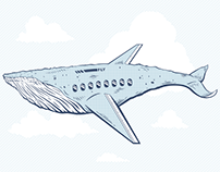 Whaleplane Illustration