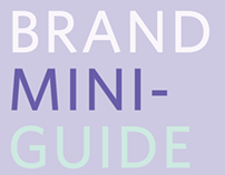 Women in Wireless | Branding Guide and collateral