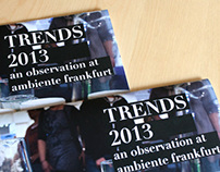 TRENDS 2013: an observation at ambiente frankfurt