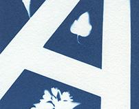 Alphabet in Cyanotype