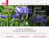 Website design for perfume company