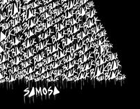 Black Samosa