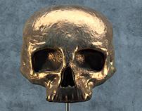 Skull - 3D
