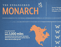The Endangered Monarch infographic (student work)