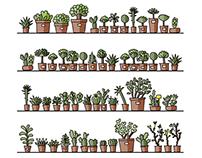 Botanical garden plants