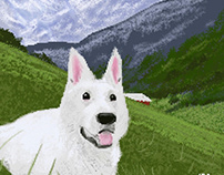 Switzerland Shepherd Pixel