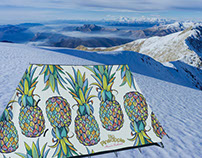 FieldCandy Big Pineapple Music Festival