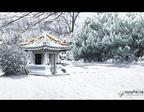 Snow Matte Painting
