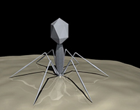 T4 Bacteriophage Animation