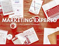 Marketing Experto