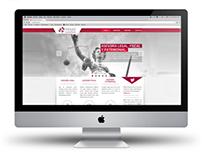 PRIAT CONSULTING WEB