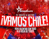 "Gráfica ""Vamos Chile"" 