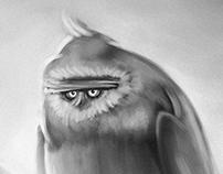 Birds Characterstudy