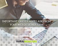 Important Questions to Ask from your Web Designer Firm