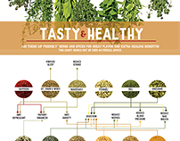 Healthy Herbs & Spices Infographic
