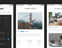 PerfectKit – desktop & mobile ready modern UI kit