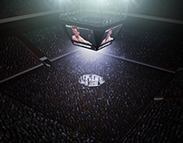 UFC ARENA