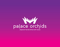 Palace Orchids