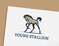 Stallion logo & identity - for sale