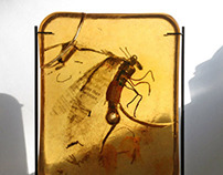 Amber Insect Sculptures