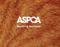 ASPCA: Reuniting moments campaign
