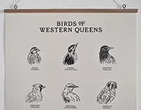 Birds of Western Queens Wall Chart
