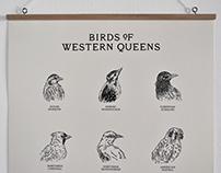 Birds of Western Queens Wall Chart