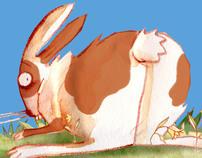 coraggio, coniglio!