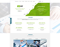 Go Erp website