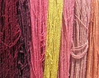 Apprenticeship: Natural Dyes