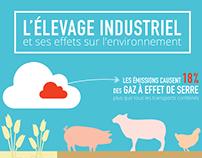 Document infographique - L'élevage industriel