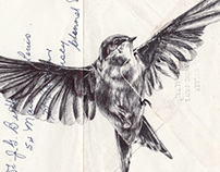 Bic biro drawing on 1973 envelope.