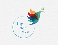 Logo Design - big net eye