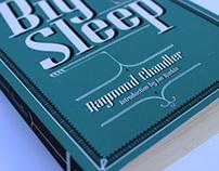 The Big Sleep book cover